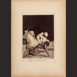 Francisco de Goya-Serie Caprichos - Que se la llevaron!