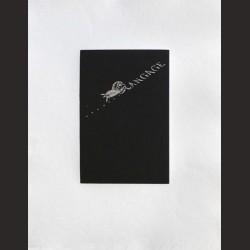 Jaume Plensa-Schubertiades nº2