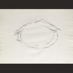 Antoni Tàpies-Le Riz