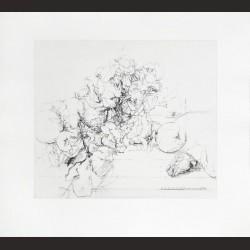 Antonio López-Membrillos, granadas y cabeza de conejo