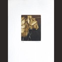 Iris Lázaro-Sin título 06