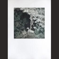 Iris Lázaro-Sin título 08