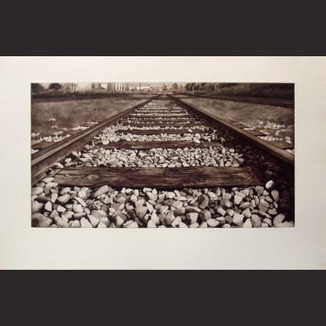 Javier Banegas-Vías de tren